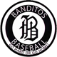 Houston Banditos