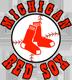Michigan Red Sox